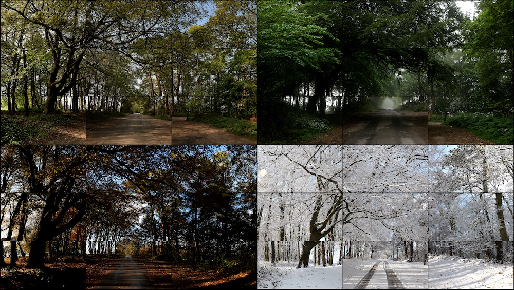 David Hockney The four seasons, Woldgate Woods (Spring 2011, Summer 2010, Autumn 2010, Winter 2010)