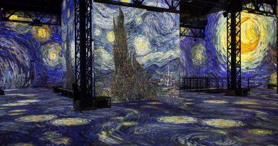 Vincent Van Gogh, un nouveau artiste mis en lumière