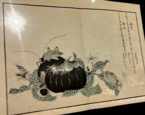 Kitagawa UtamaroAlbum d'insectes choisis, 1892