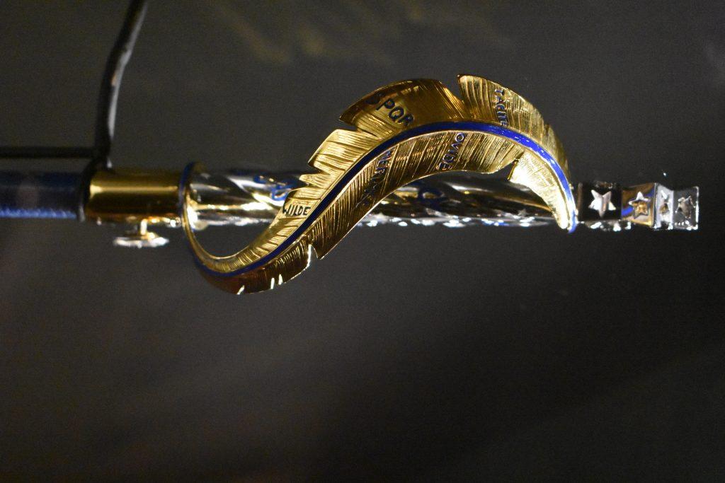 Épée d'Académicien de Xavier Darcos