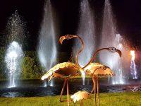 Folie'Flore à Mulhouse – Vingt ans d'art fleuri !